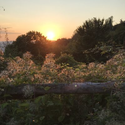 Agriturismo e ristorazione in Val di Sieve